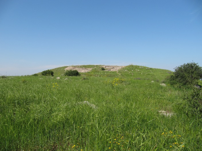 Tel Burna in the Spring